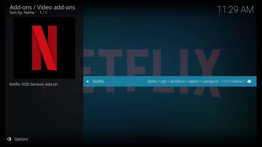Select the Netflix Kodi Addon