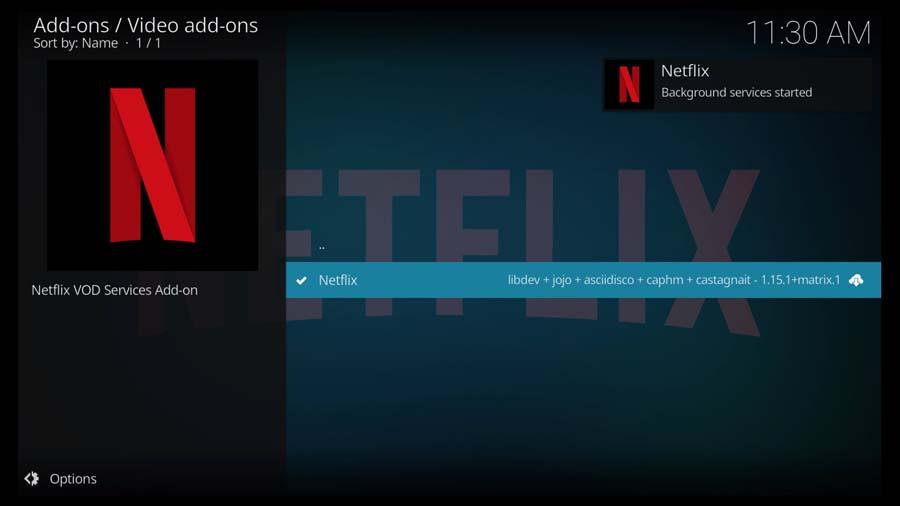 Netflix Kodi addon installed